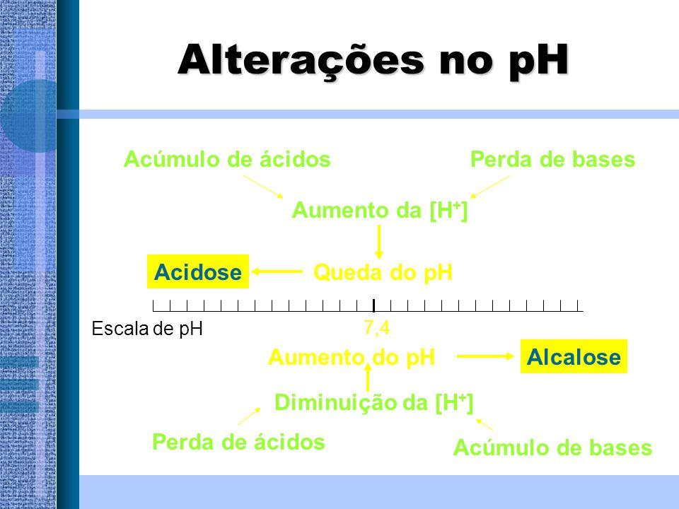 Alterações no pH Acúmulo de ácidos Perda de bases Aumento da [H+]